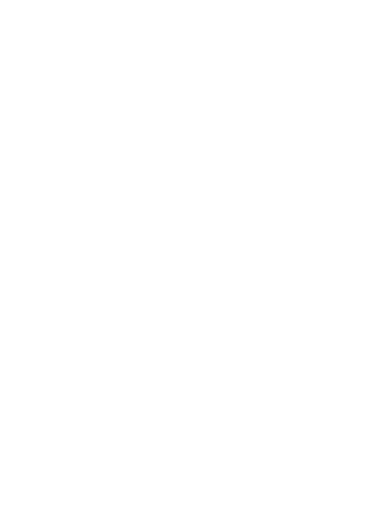 de Jong Horses